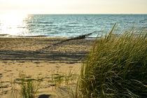 An der Nordseeküste von Claudia Evans