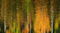 Goldener Oktober von k-h.foerster _______                            port fO= lio