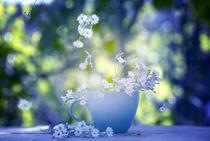 Flower stories von Iryna Mathes