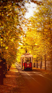 Old Tram in Prague, Czech Republic by Tomas Gregor