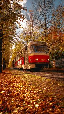 Red Tram von Tomas Gregor