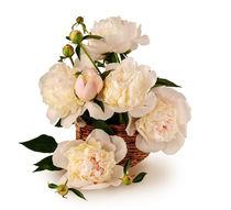 Bouquet of white peonies by larisa-koshkina