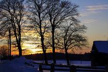 Romantische Winterstimmung im Sonnenuntergang des letzten Tageslichts.  von Werner Meidinger