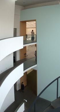 Das Museum als Raumgestalt von Hartmut Binder