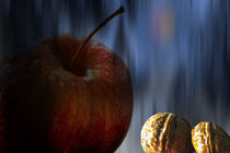 Concept Halloween : Apple and nuts by Michael Naegele