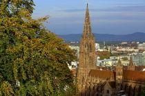 Freiburg im Herbst by Patrick Lohmüller