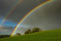 Regenbogen bei Eschach im Ostallgäu von Christine Horn
