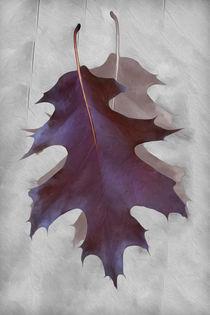 Dance of Autumn by feiermar