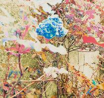 Englisch Flower von Kiki de Kock