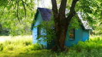 Haus im Grünen von Torsten Reuschling