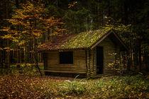 Schutzhütte im Irndorfer Hardt im Herbst - Naturpark Obere Donau von Christine Horn