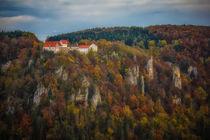 'Burg Wildenstein im Naturpark Obere Donau' von Christine Horn