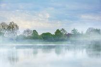 Zeit des Nebels von Claudia Evans