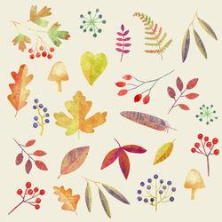 Autumn-walk-5400
