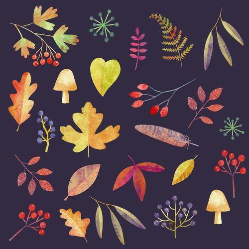 Autumn-walk-in-the-dark