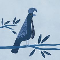 Umbrella Bird by Nic Squirrell