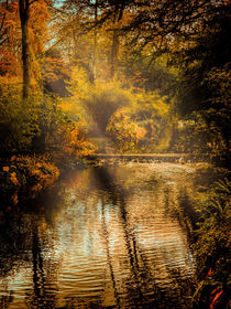 Autumn Light von Colin Metcalf