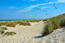 Strand Idylle von Claudia Evans