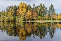 Herbst am See / autumn at the lake von Gabi Emser