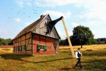 Die Axt im Haus erspart den Zimmermann von garrulus-glandarius