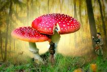 In die Pilze schicken by garrulus-glandarius