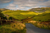 Dales Road by Colin Metcalf