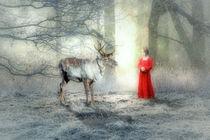 'Der erste Schnee' by garrulus-glandarius