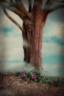 'Misty Morning Magic' von CHRISTINE LAKE