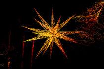 Weihnachtsstern Christmas  von Ralf Ramm - RRFotografie