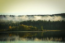 Hazy morning at the shore of a glassy forest lake on a sunny autumn day von Intensivelight Panorama-Edition