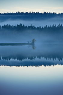A misty forest is reflected in a glassy lake in the blue hour of an autumn day von Intensivelight Panorama-Edition