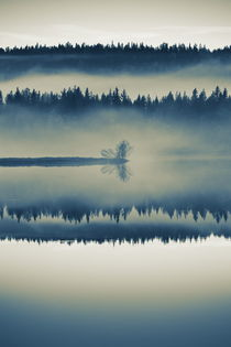 A misty forest is reflected in a glassy lake - duotone by Intensivelight Panorama-Edition
