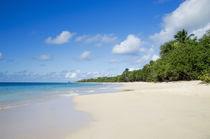 Sandy Beach of Caribbean Island von cinema4design
