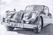 Der Jaguar aus Jena (Bleistiftzeichnung) by Martin Mißfeldt