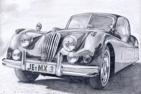Zeichnung-jaguar-aus-jena-print