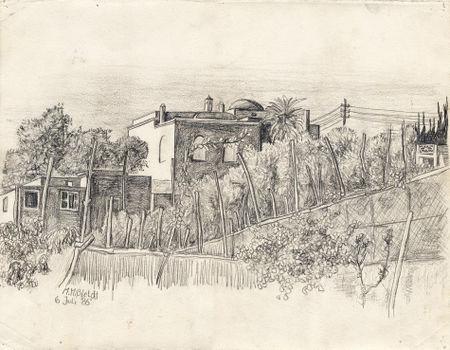 Capri-campo-agosto-print
