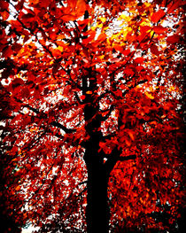 Tree of Flames von mimulux