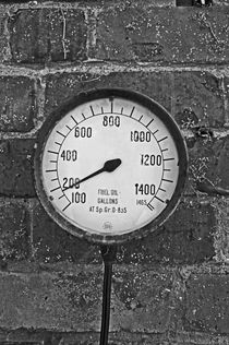 NESTON. Ness Gardens, Old Fuel Gauge. by Lachlan Main