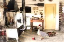 In der kalten Küche by garrulus-glandarius