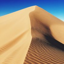 Dune by Kris Arzadun