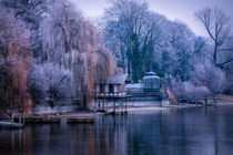 Romantisches Ufer in Radolfzell von Renate Dohr