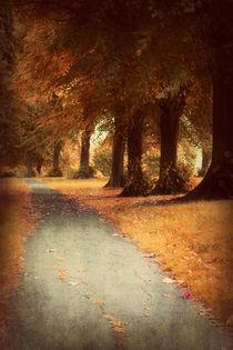 'Walking Through Autumn' von CHRISTINE LAKE