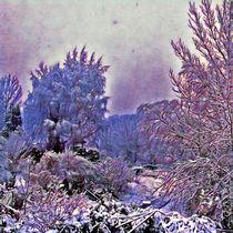 Winter in der Au von Egon Plandor