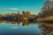 Uferlandschaft Böhringer See bei Radolfzell by Christine Horn