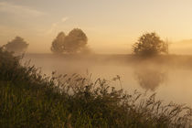 Snohomish Valley sunrise in fog with reflections in calm river with tall grass by Jim Corwin