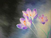 Frühling von Valentina Sullivan