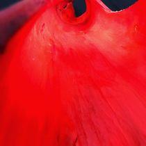 red beauty von Valentina Sullivan