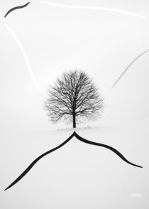 Tree on the Hill by zelko radic