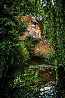 House By The River by Ian Lewis