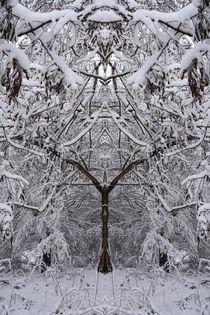 magischer Winterblick von alana